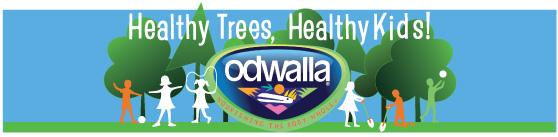 Healthy Trees, Healthy Kids Odwalla Banner