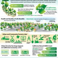 Jobs and Trees