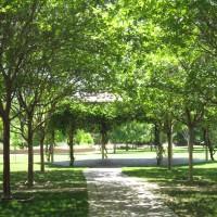 Markham Regional Park