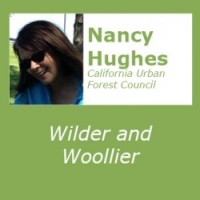 Wilder and Woollier