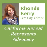 Rhonda Berry Interview