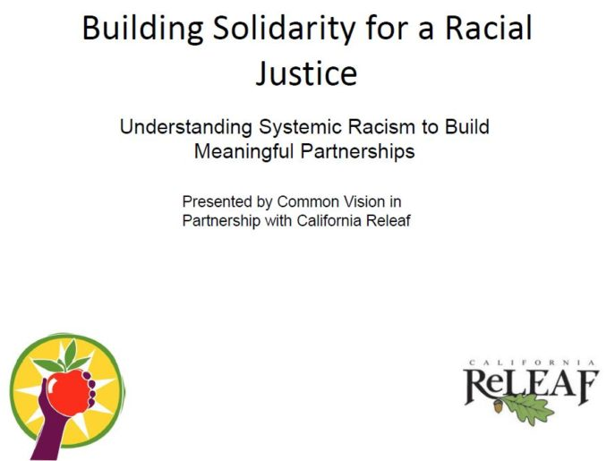 Building Solidarity for a Racial Justice: Understanding Systemic Racism to Build Meaningful Partnerships