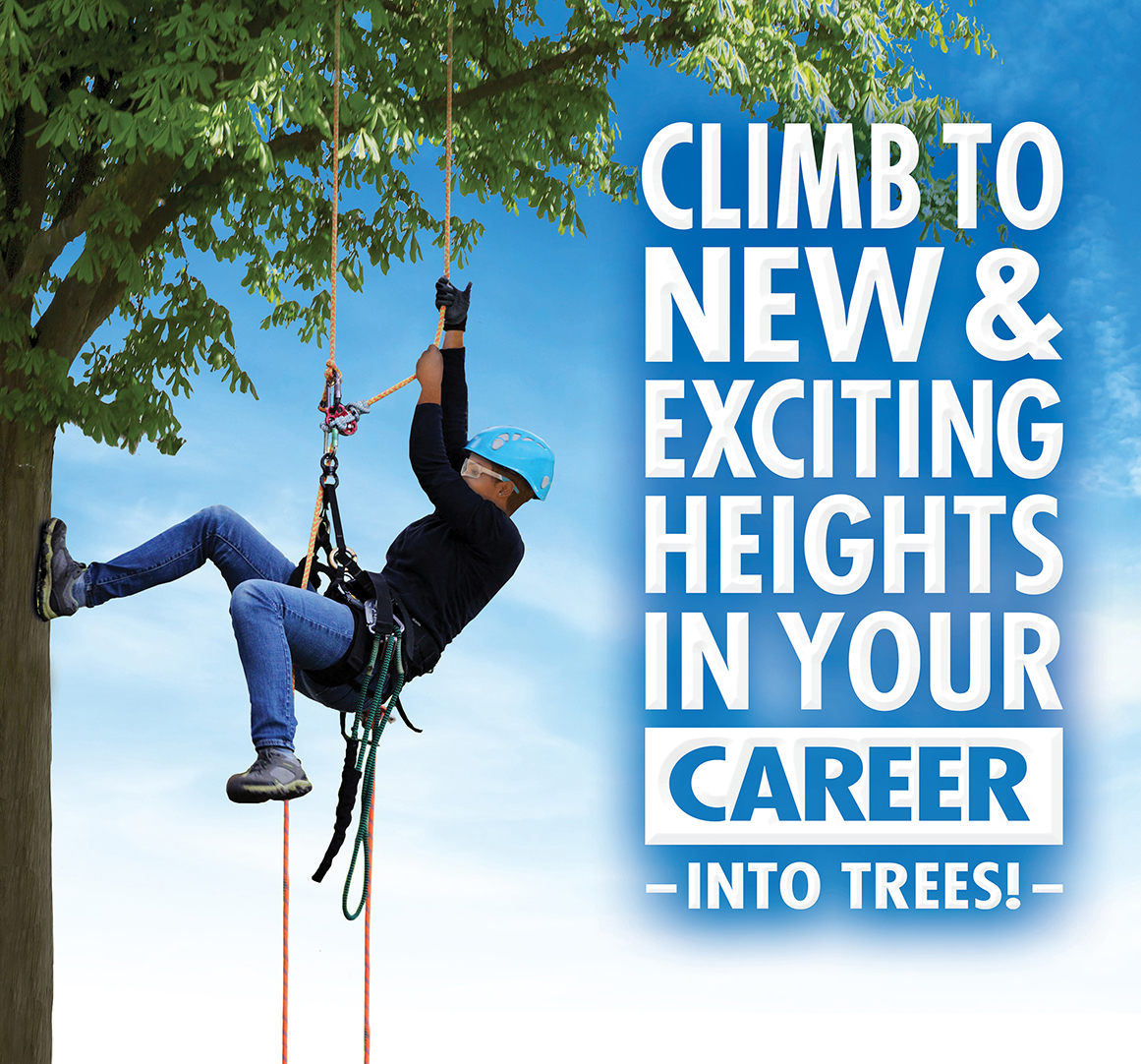 Green Jobs - Knowledge of Tree Care Career and Education